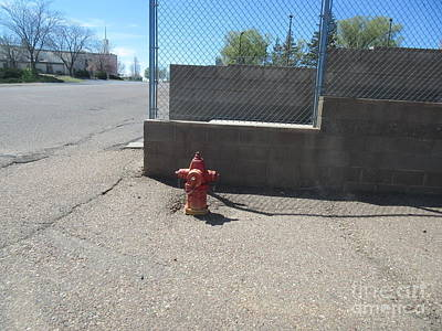 Fire Hydrant Mixed Media - Fire Hydrant by Frederick Holiday