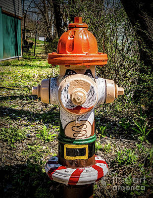 Photograph - Fire Hydrant In High Bridge by Nick Zelinsky