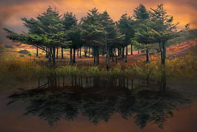 Fire In The Lake Art Print by Debra and Dave Vanderlaan