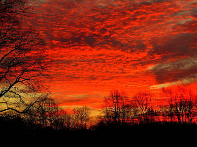 Fire In The Sky Art Print by Aron Chervin