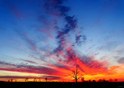 Photograph - Fire In The Sky by Brenda Conrad