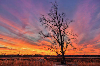 Photograph - Fire in the Sky by Chris Austin