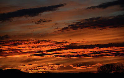 Photograph - Fire In The Sky by Nadalyn Larsen