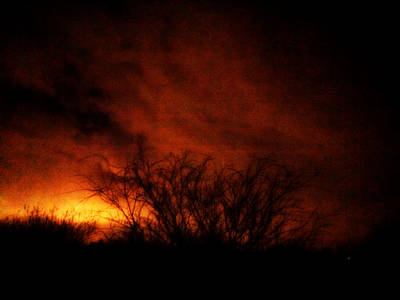 Photograph - Fire In The Sky by Nature Macabre Photography