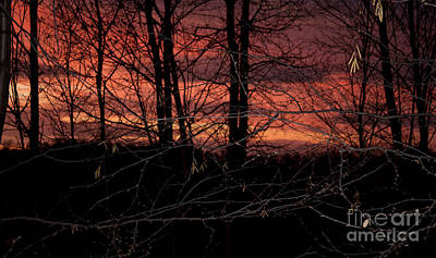 Fire In The Sky Art Print by Robert Sander