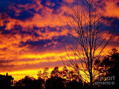 Photograph - Fire In The Sky by Sue Melvin