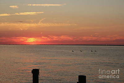 Photograph - Fire Island Sunset by Serena Ballard