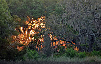 Print featuring the photograph Fire Light Jekyll Island 03 by Bruce Gourley