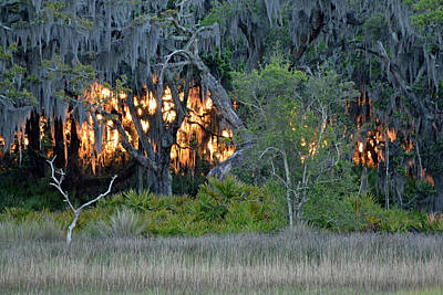 Print featuring the photograph Fire Light Jekyll Island by Bruce Gourley