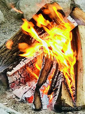 Photograph - Fire Of Life by Michael Krek
