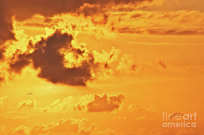 Photograph - Fire On Sky by Angela Doelling AD DESIGN Photo and PhotoArt