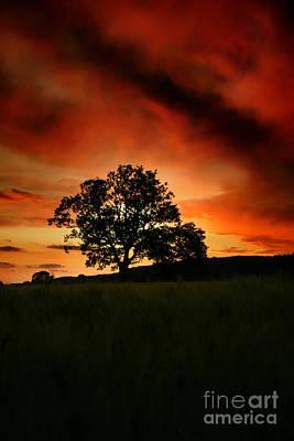 Fire On The Sky Art Print by Angel  Tarantella