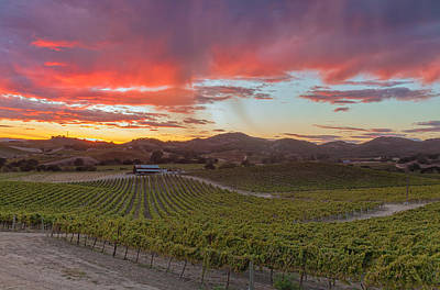 Photograph - Fire Over Vineyard by Jonathan Nguyen