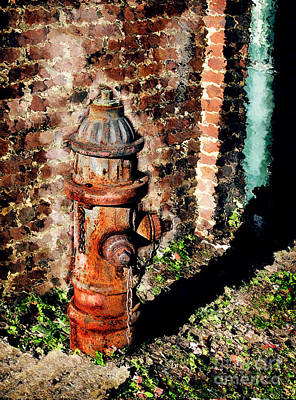 Photograph - Fire Plug by Colleen Kammerer
