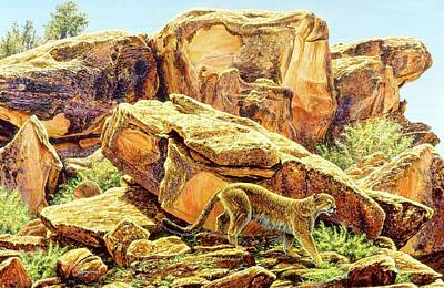 Painting - Fire Rock Cougar by Brian Durfee