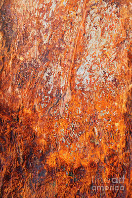 Photograph - Fire Stone by Tim Gainey
