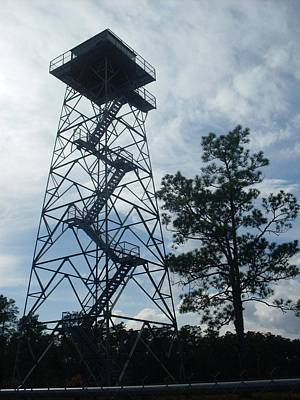 Fire Tower In The Forest Art Print by Warren Thompson