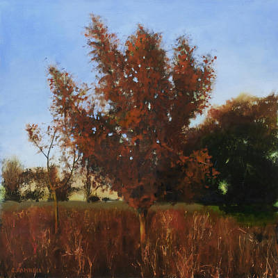 Painting - Fire Tree 3 by Cap Pannell
