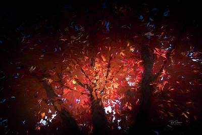 Photograph - Fire Tree  by Bill Posner