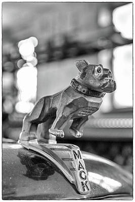 Photograph - Fire Truck Hood Ornament by Patricia Schaefer