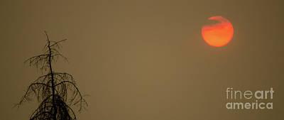 Photograph - Fireball by Nick Boren