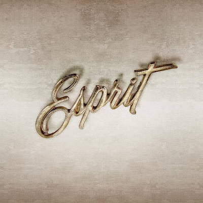 Firebird Esprit Chrome Emblem Art Print