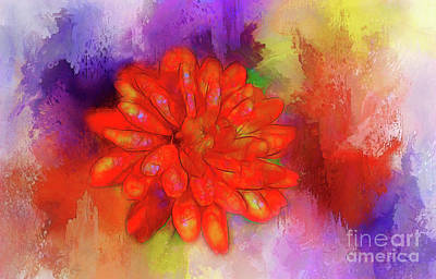 Photograph - Fireflower by Judi Bagwell