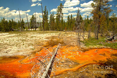 Photograph - Firehole Bacterial Mat by Adam Jewell