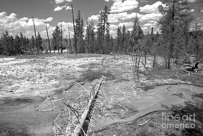 Photograph - Firehole Bacterial Mat Black And White by Adam Jewell