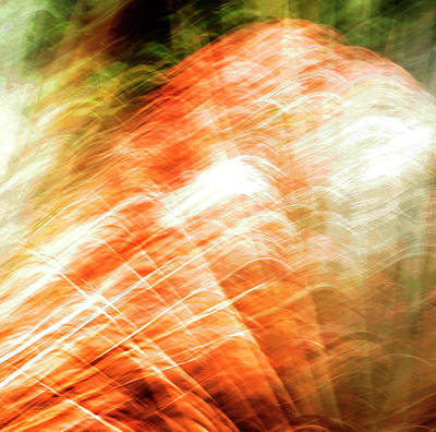 Photograph - Firery Abstract by Marilyn Hunt