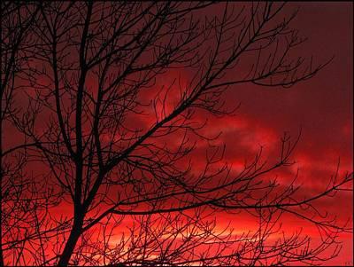 Photograph - Firestorm by Cheryl Charette