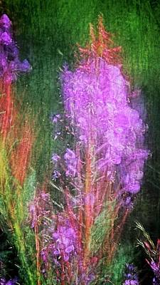 Photograph - Fireweed by Flying Z Photography by Zayne Diamond