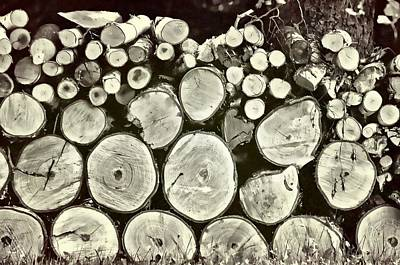 Photograph - Firewood by JAMART Photography