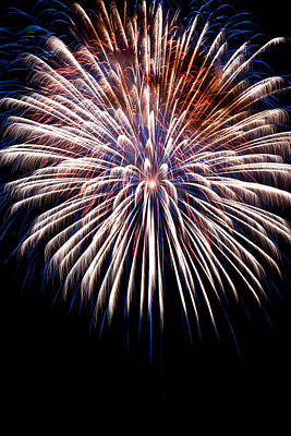 Photograph - Firework Beauty by Colleen Coccia