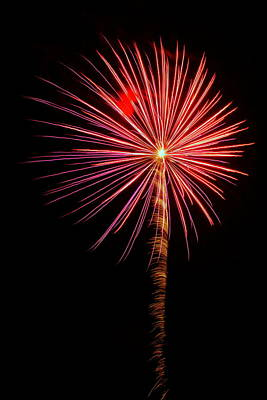 Photograph - Fireworks 022 by Larry Ward