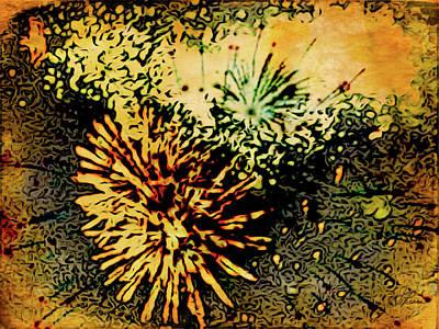Digital Art - Fireworks 1 by Joan Reese