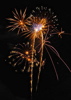 Fireworks 2 Art Print by Michael Peychich