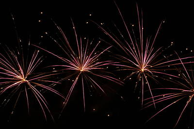 Photograph - Fireworks 6 by Ron Read
