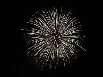 Photograph - Fireworks From A Boat - 2 by Jeffrey Peterson