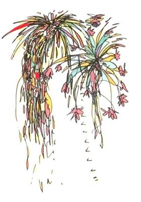 Fireworks Drawing - Fireworks Iv by Gabe Art Inc