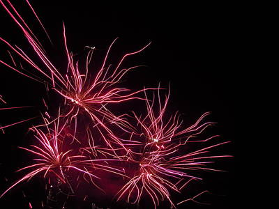 Photograph - Fireworks Seven by Nancy Griswold