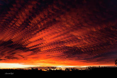 Photograph - Fiery Sky 7 by Karen Slagle