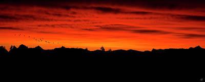 Photograph - Firey Sunrise by Lisa Knechtel
