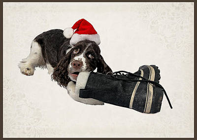 Dog Christmas Card Digital Art - First Christmas by Melody Carranza