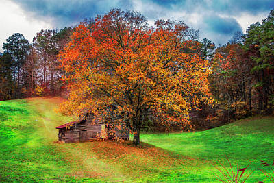 Photograph - First Day Of Fall by Debra and Dave Vanderlaan