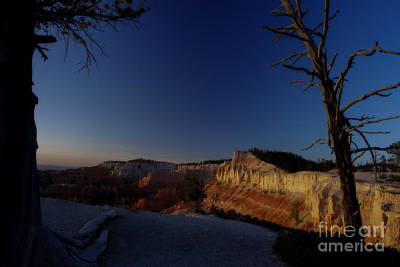 Photograph - First Daylight In The Canyon by Dan Friend