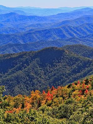Photograph - First Falls Colors In The Blue Ridge Mountains by Dan Sproul