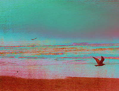 Sea Birds Painting - First Flight by Bonnie Bruno