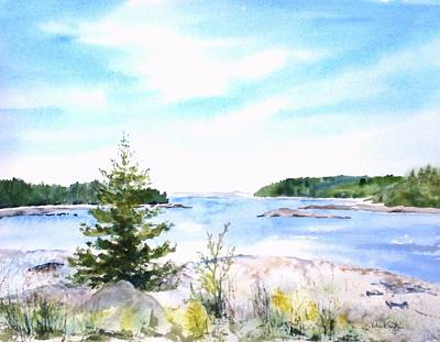 Painting - First Impressions, Maine by Diane Kirk