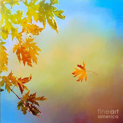 Photograph - First Glimpse Of Autumn In Oklahoma by Janette Boyd